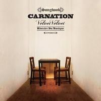 Carnation_velvet