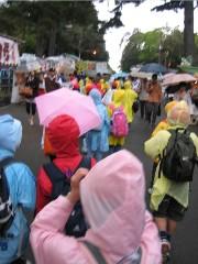 T_rain